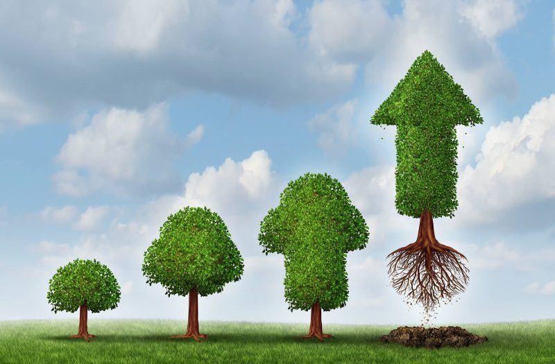 Lead Nurturing: cos'è e come integrarlo in una strategia